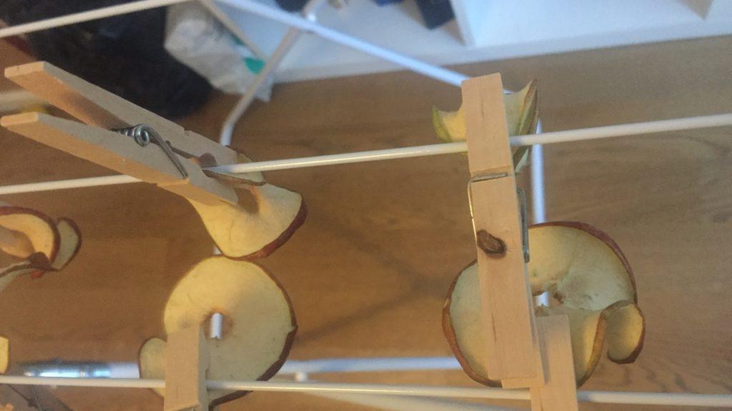 An Wäscheständer getrocknete Apfelringe