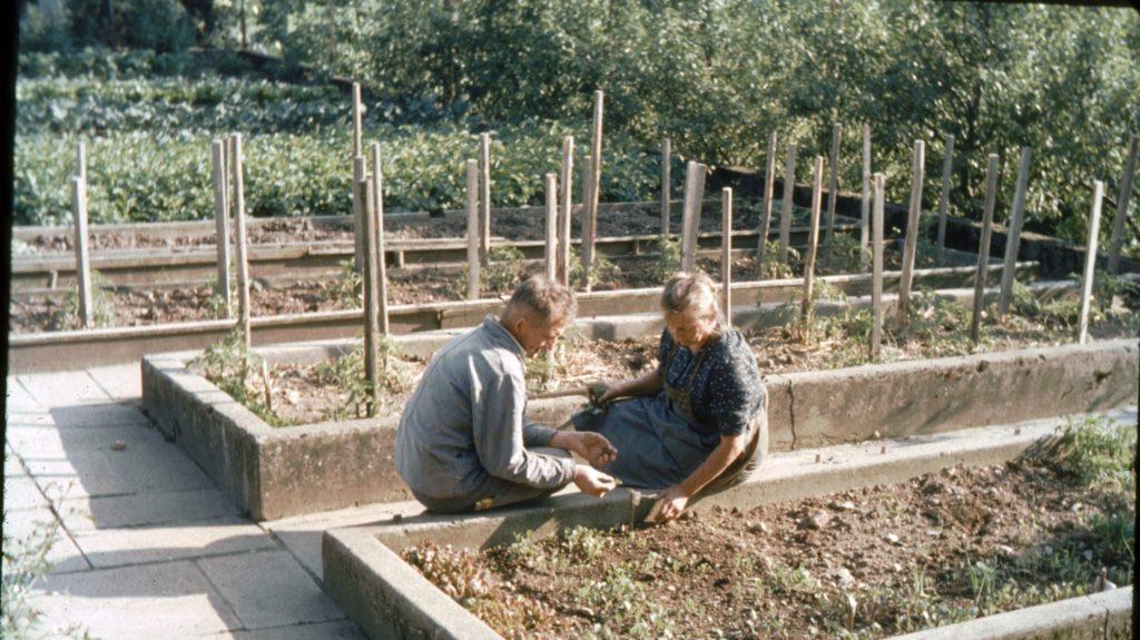 Vater und Elsa Jucker im Garten