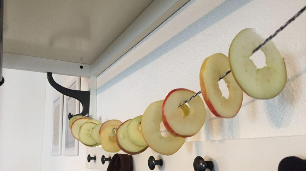 Auf Schnur aufgefädelte Apfelringe