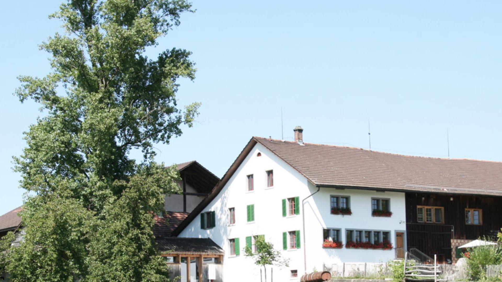 Juckerhof Alte Pappel