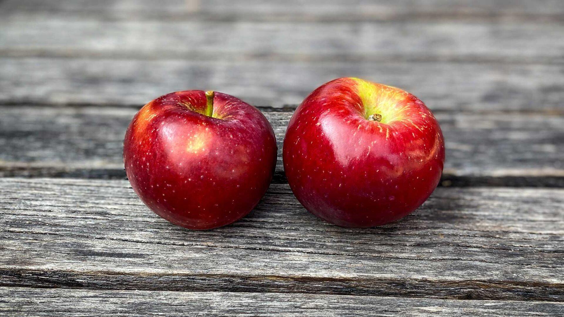 Spezielle Apfelsorte Berner Rosen