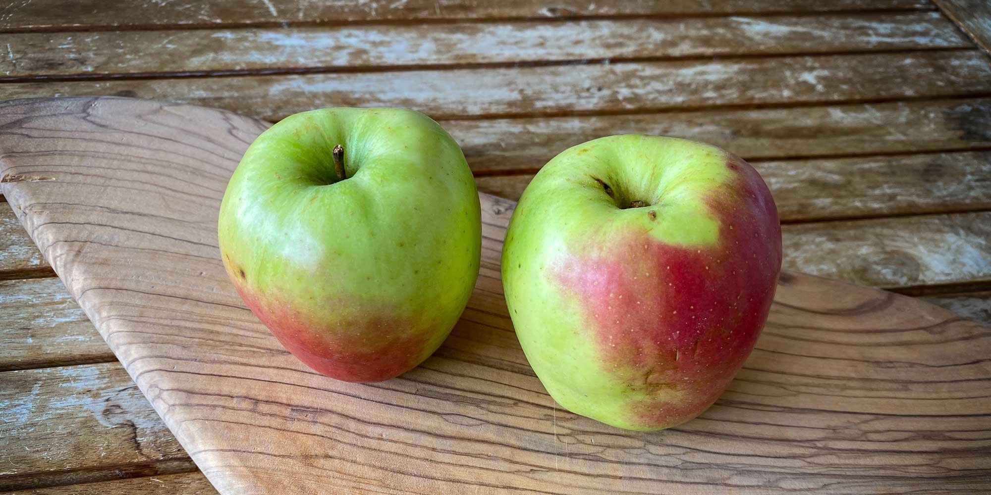 Glockenäpfel sind eine alte und sensationelle Lagersorte.
