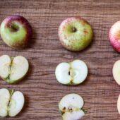 4 Apfelsorten