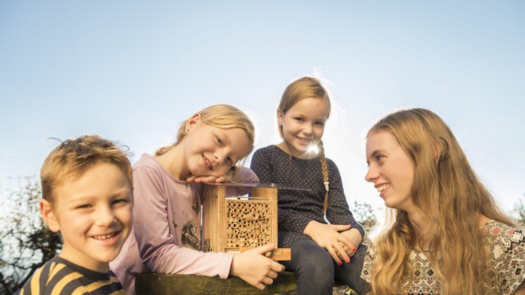 BeeHome Mit Kids, Wildbienen Sind Harmlos