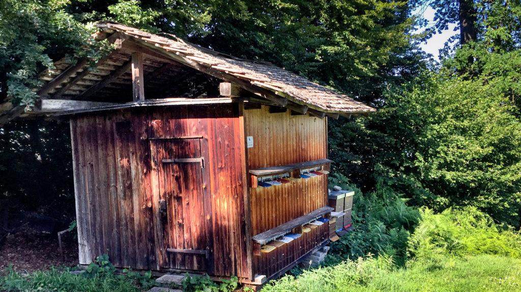 Bienenhäuschen am Waldrand
