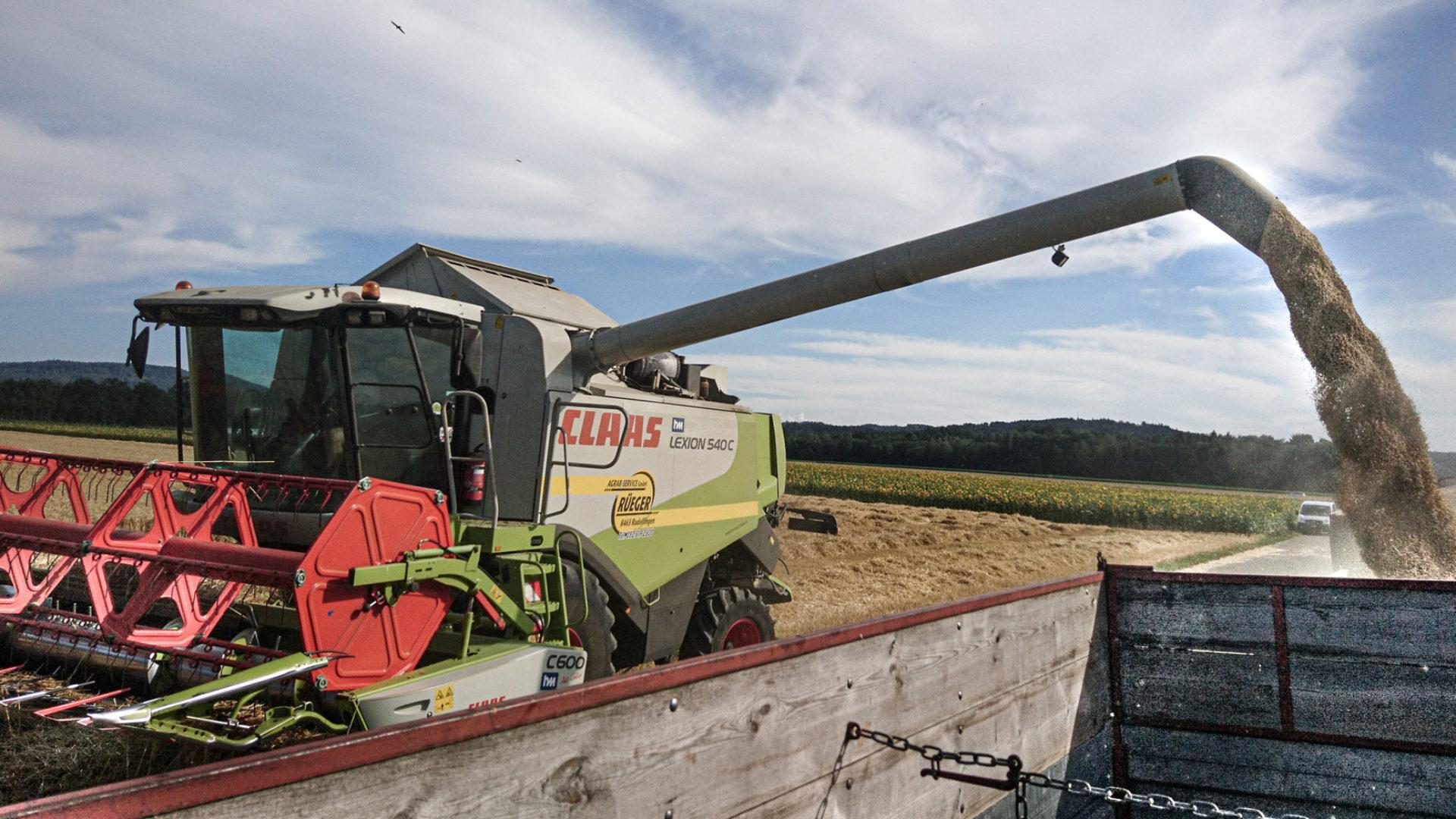 Traktor bei Getreideernte