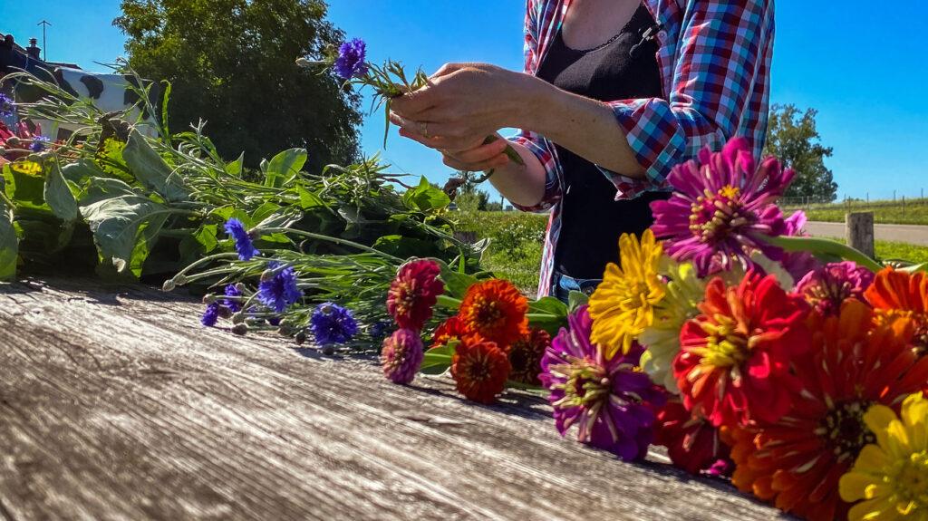 Blumen Pflücken Rüstplatz
