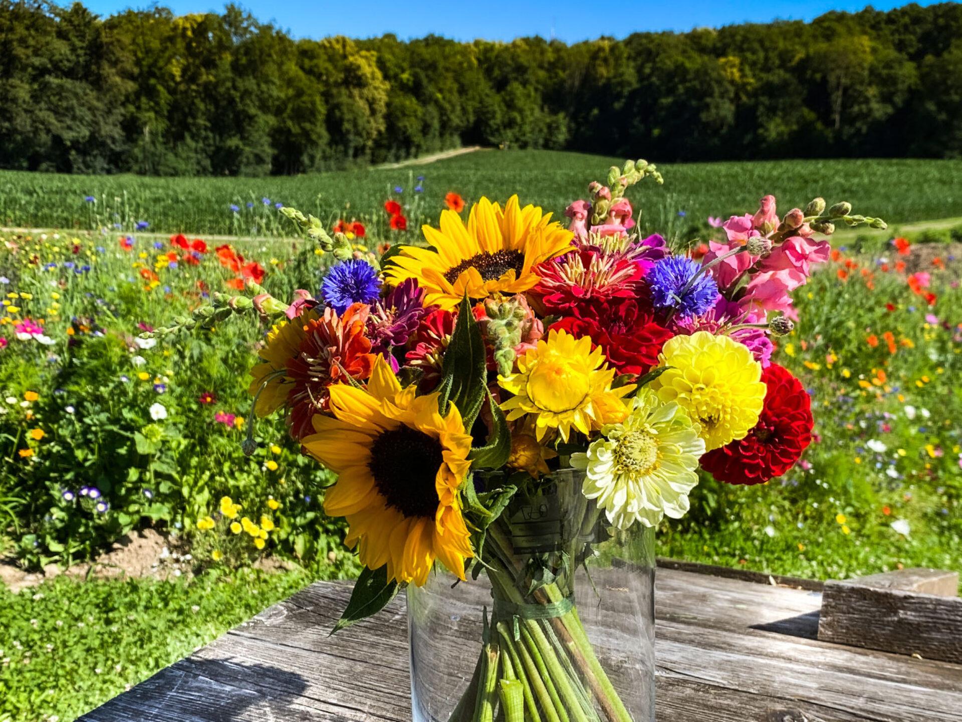 Blumenstrauss Selberpflücken