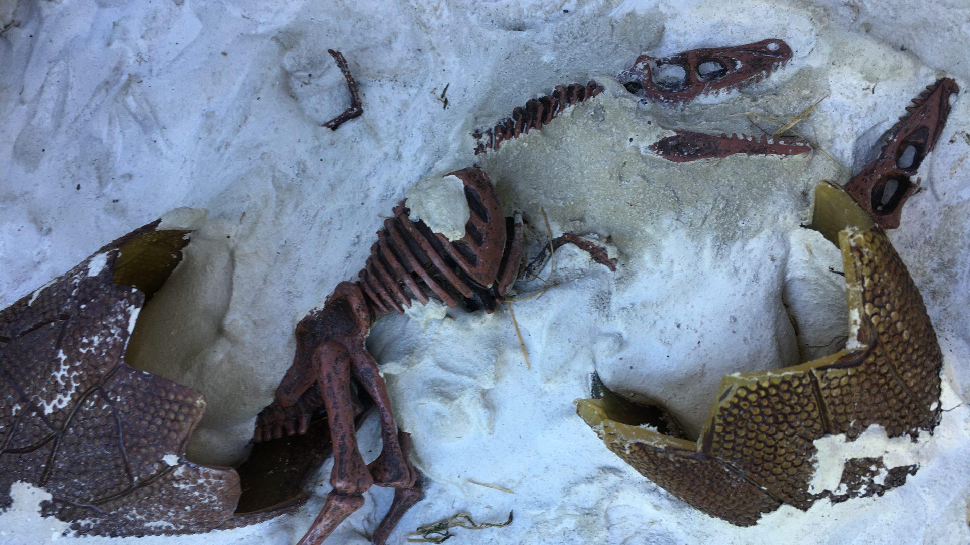 Dinosaurierei Juckerhof