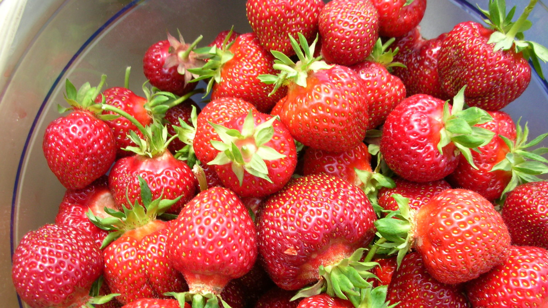 Erdbeeren in Schüssel