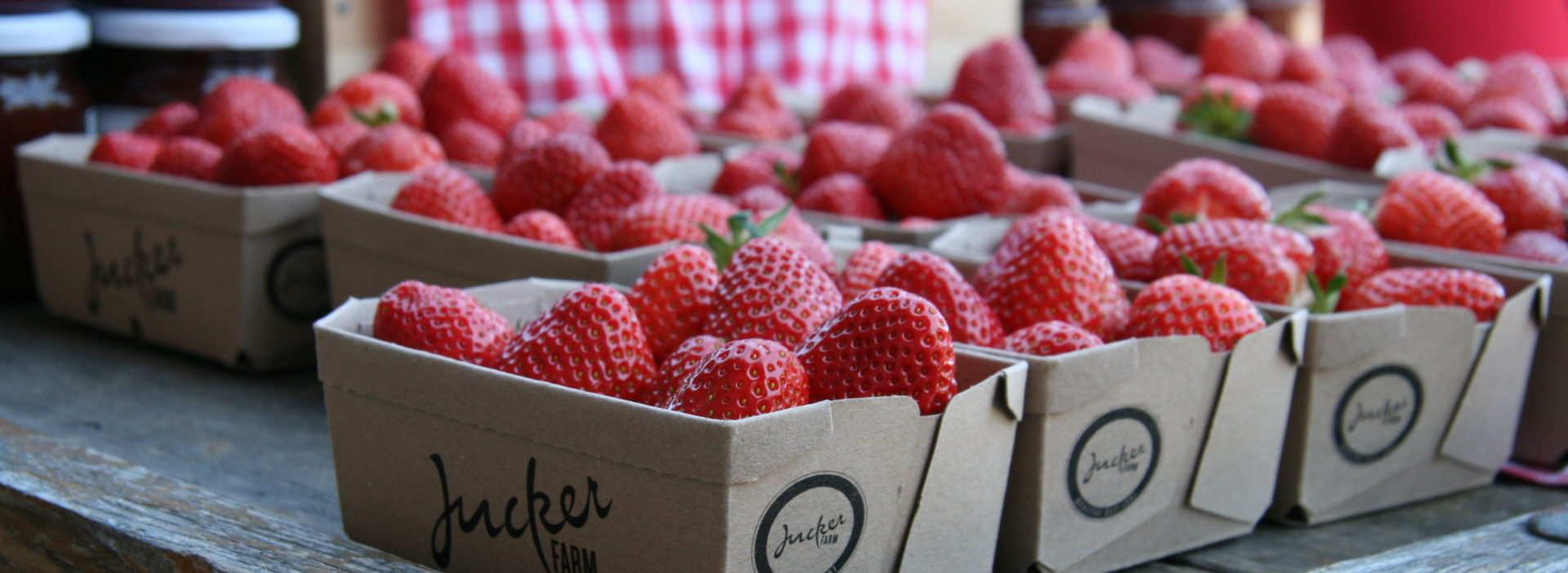 Erdbeeren Hofladen
