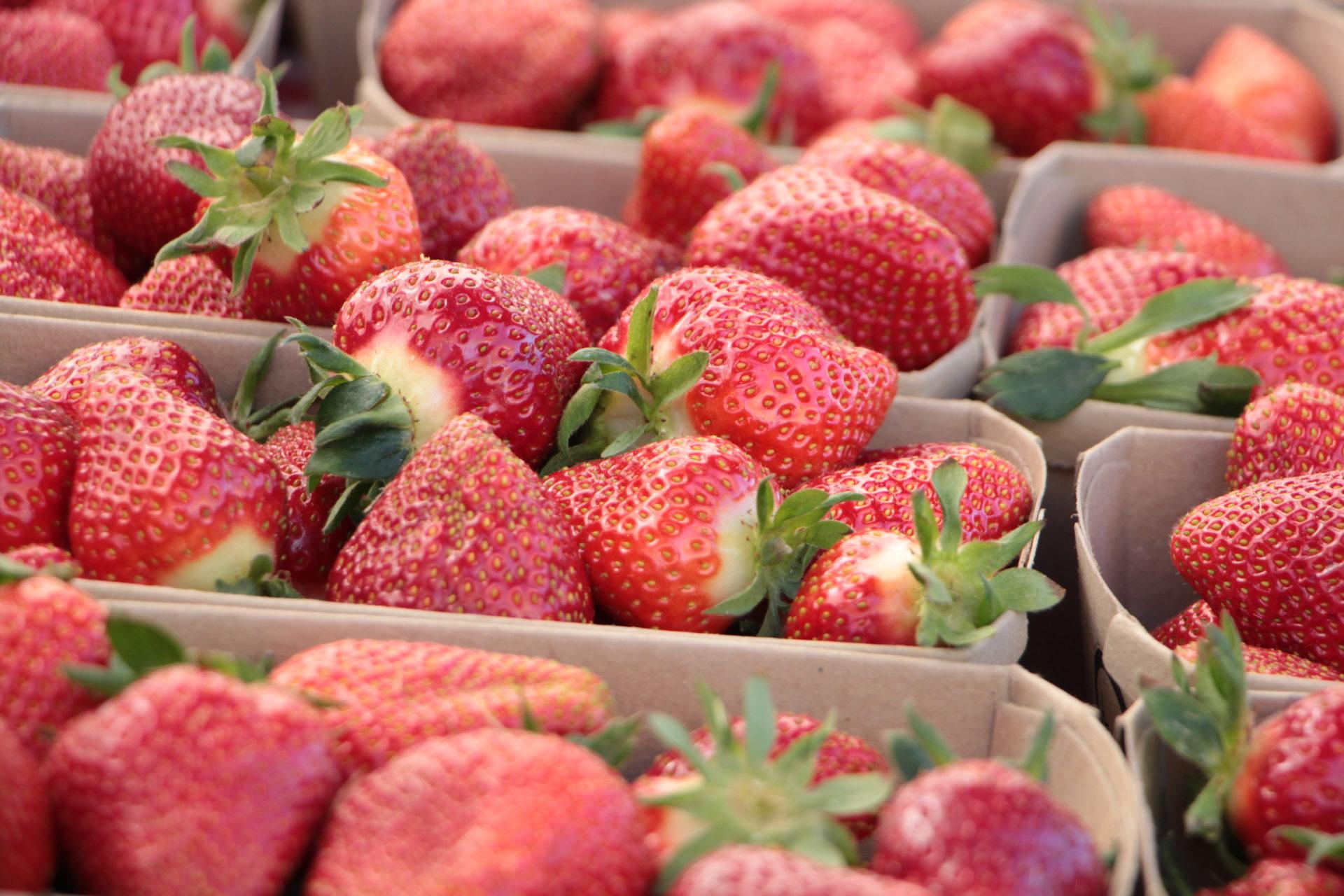 Erdbeeren Hofladen Nah