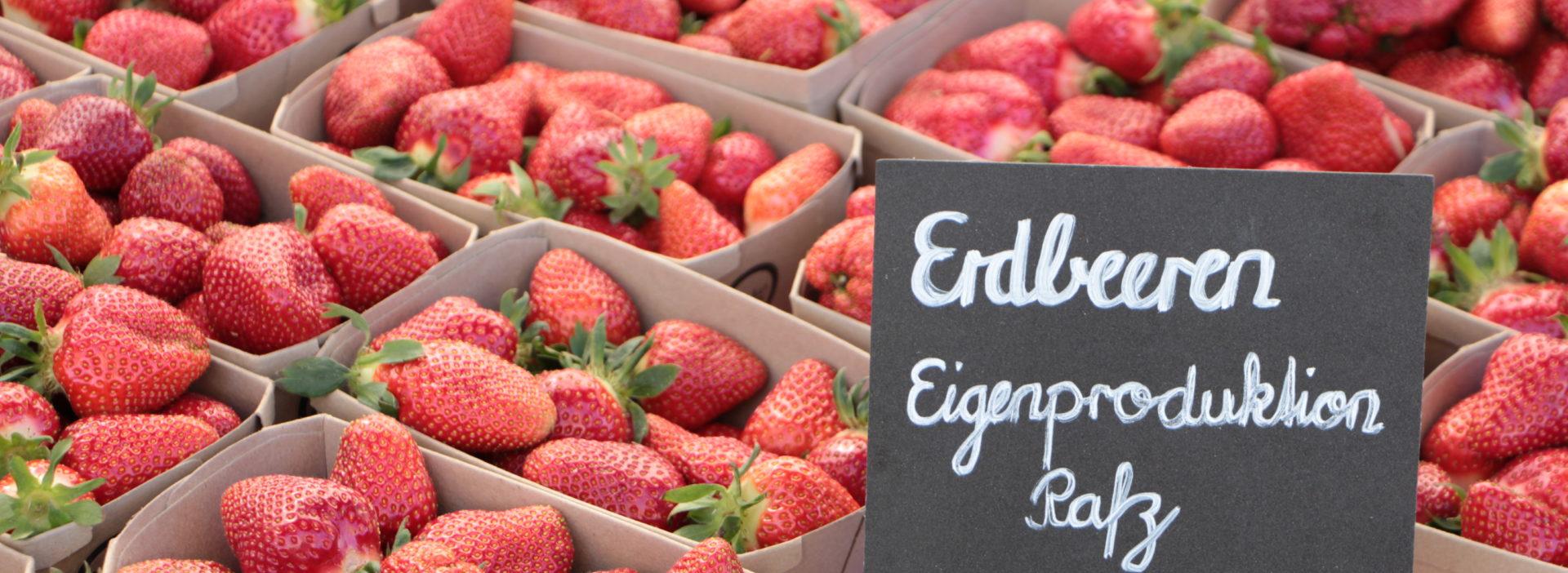 Erdbeeren Hofladen Juckerhof