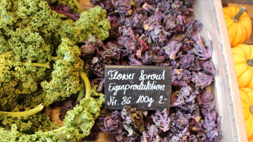 Wintergemüse FlowerSprout Hofladen