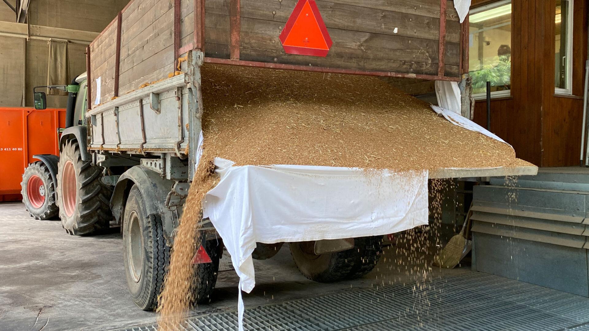 Abladen Getreideerente