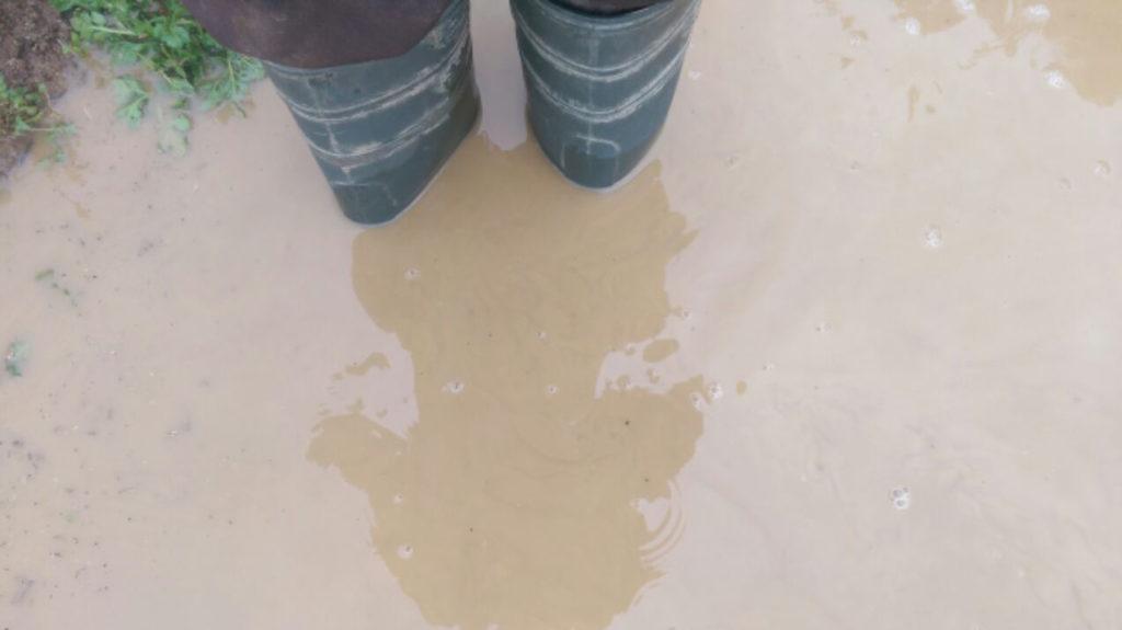 Gummistiefel Im Wasser