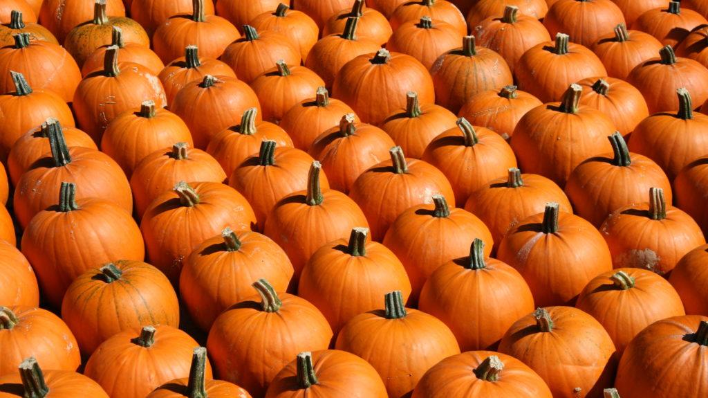 Halloweens Jucker Farm