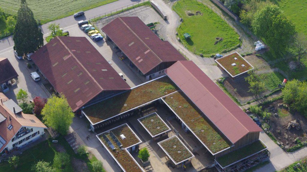 Hof Wagenburg Luftbild