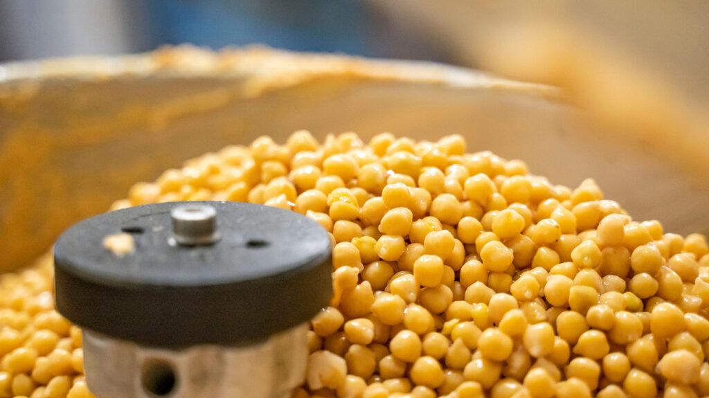 Hummusproduktion Kichererbsen