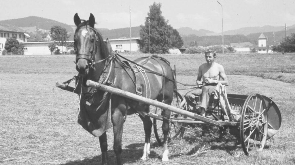 Ueli Jucker mit Pferd