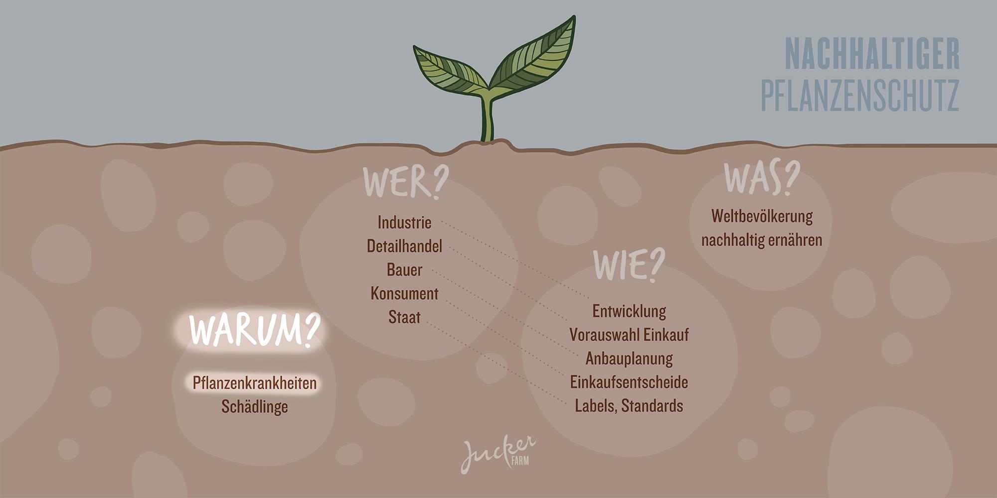 Juckerfarm Infografik Pflanzenschutz Pflanzenkrankheiten