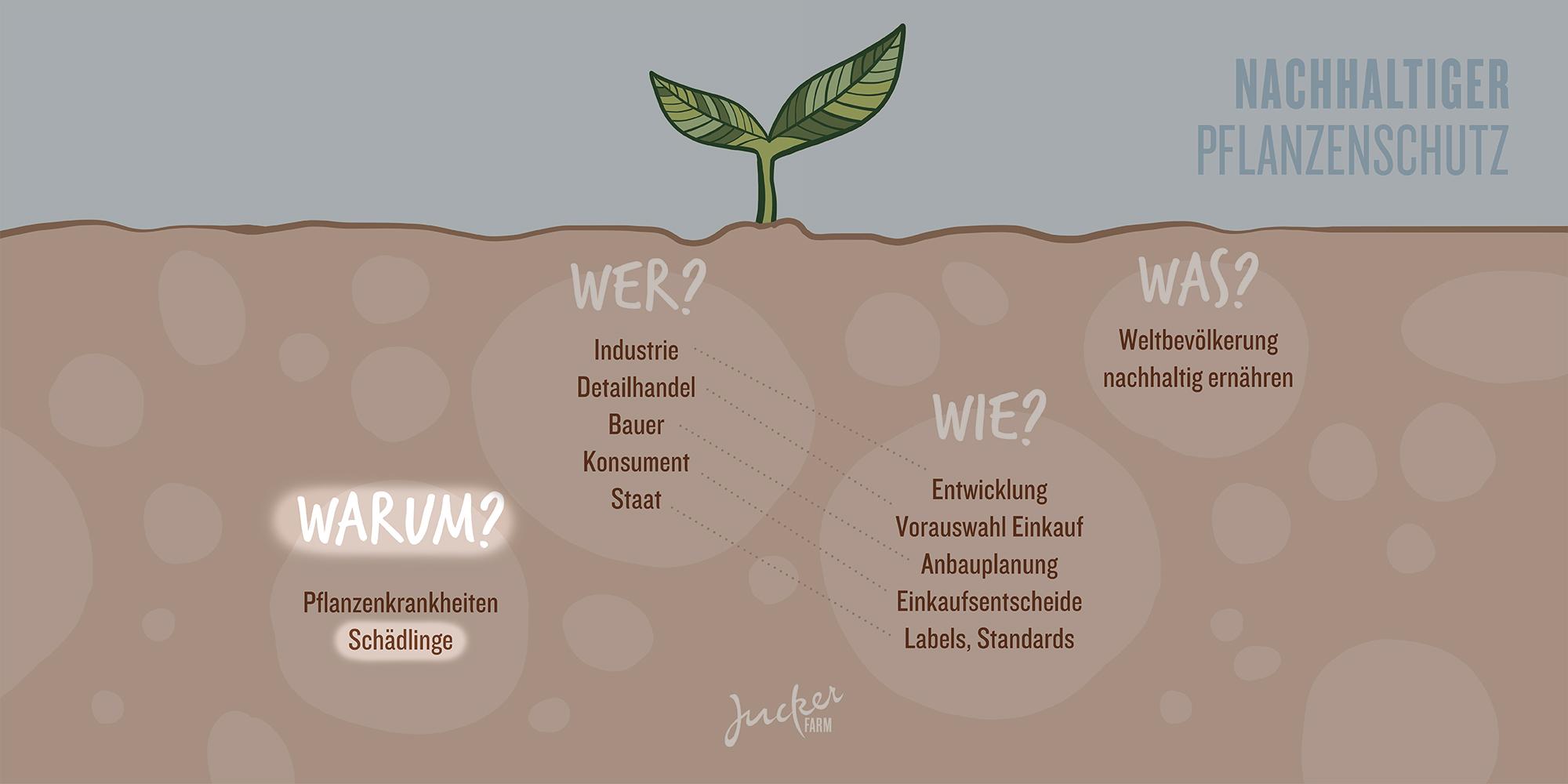 Juckerfarm Infografik Pflanzenschutz Schaedlinge