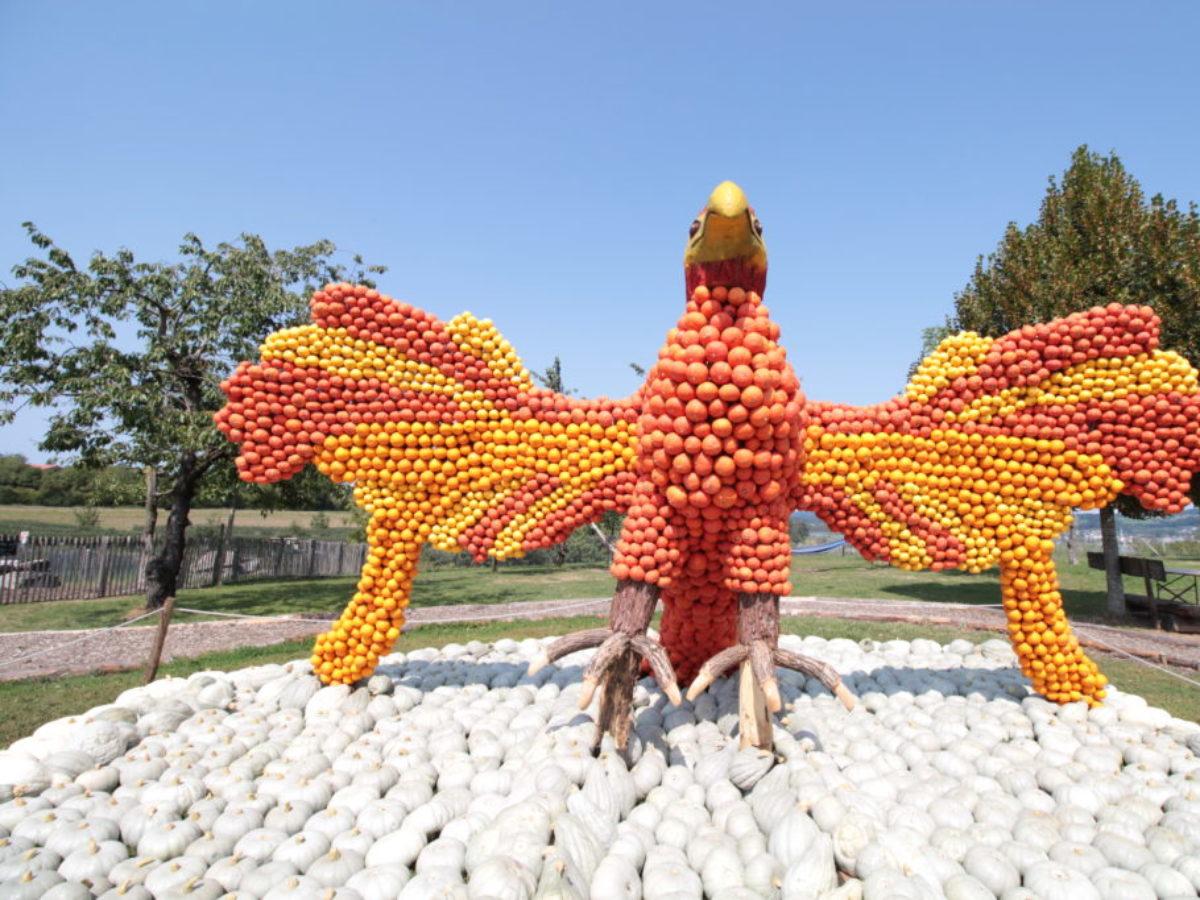 Kürbisausstellung Phoenix