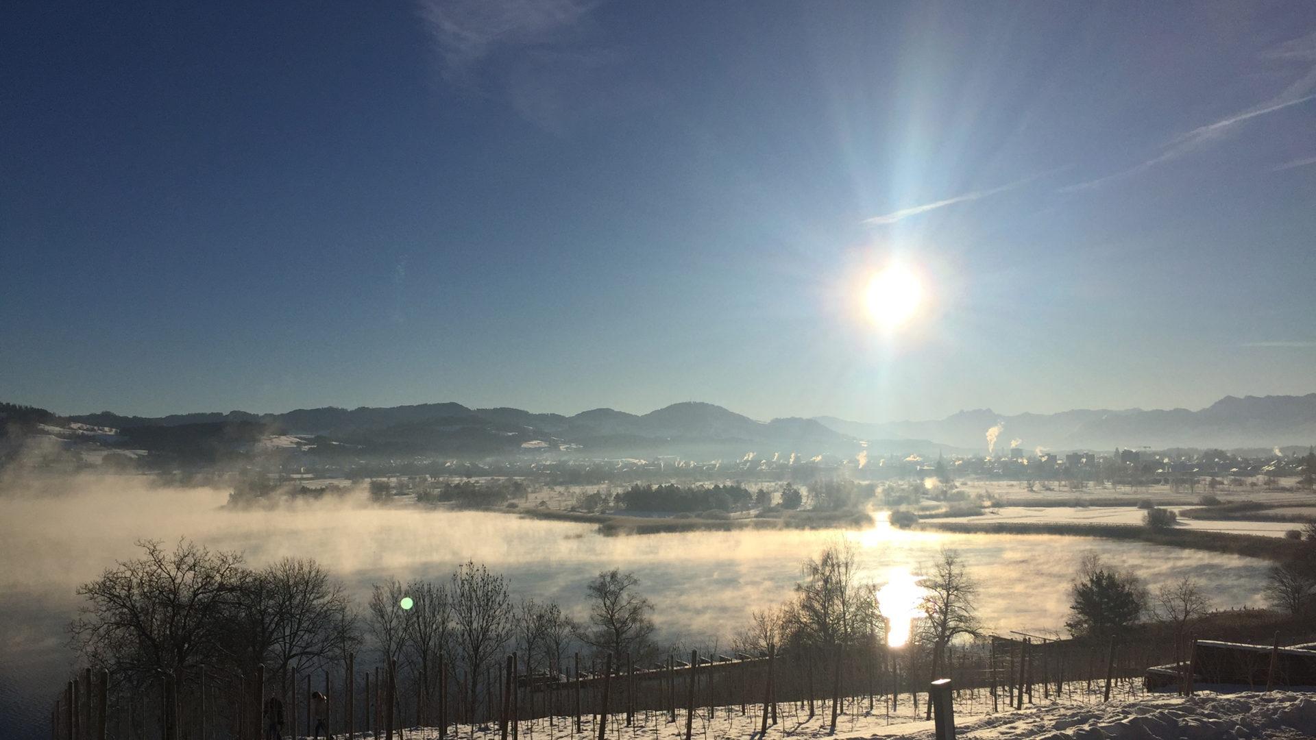 Kaelteeinbruch Juckerhof Feb18
