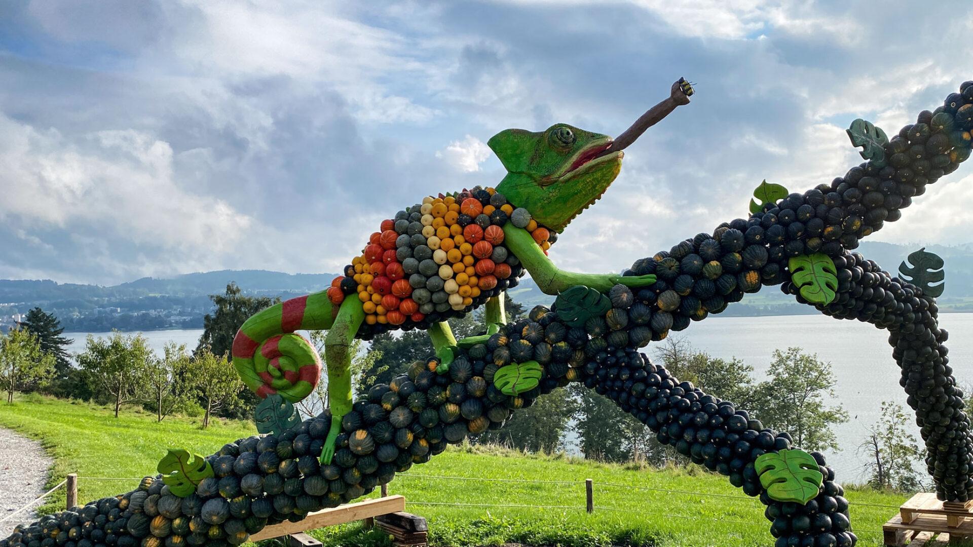 Kürbisausstellung Dschungel