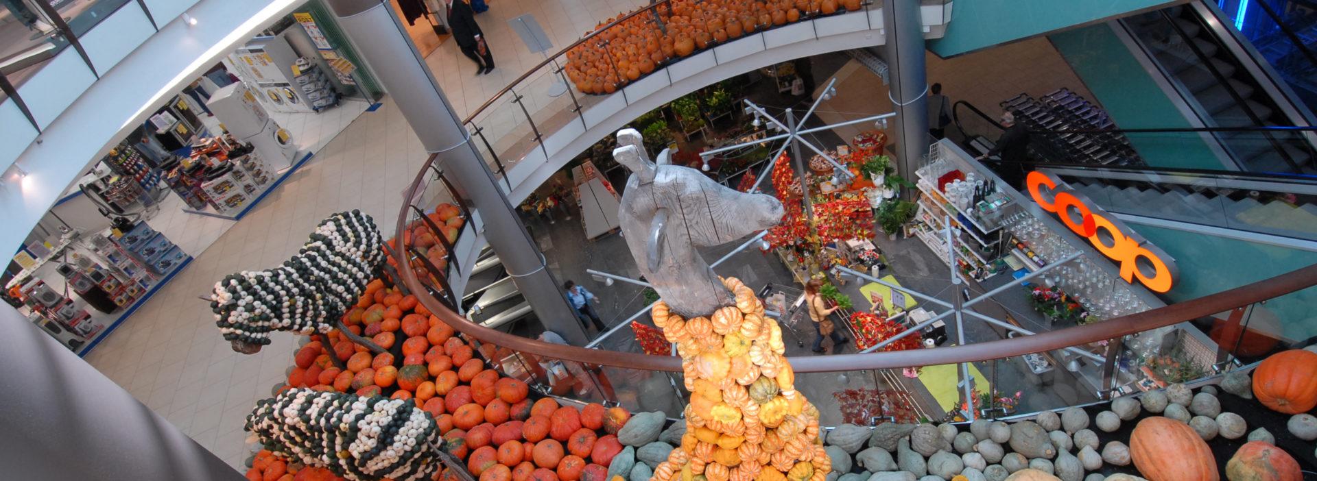 Kürbis Ausstellung mieten Einkaufszentrum