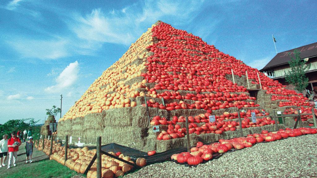 Pyramide aus Kürbissen