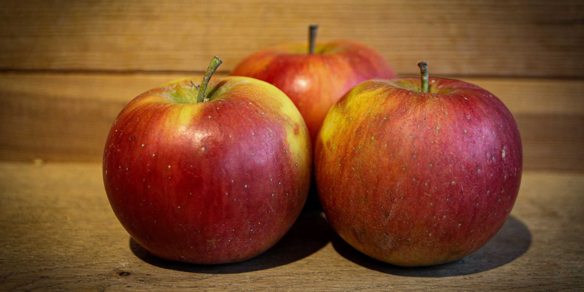 Ladina Apfelsorte