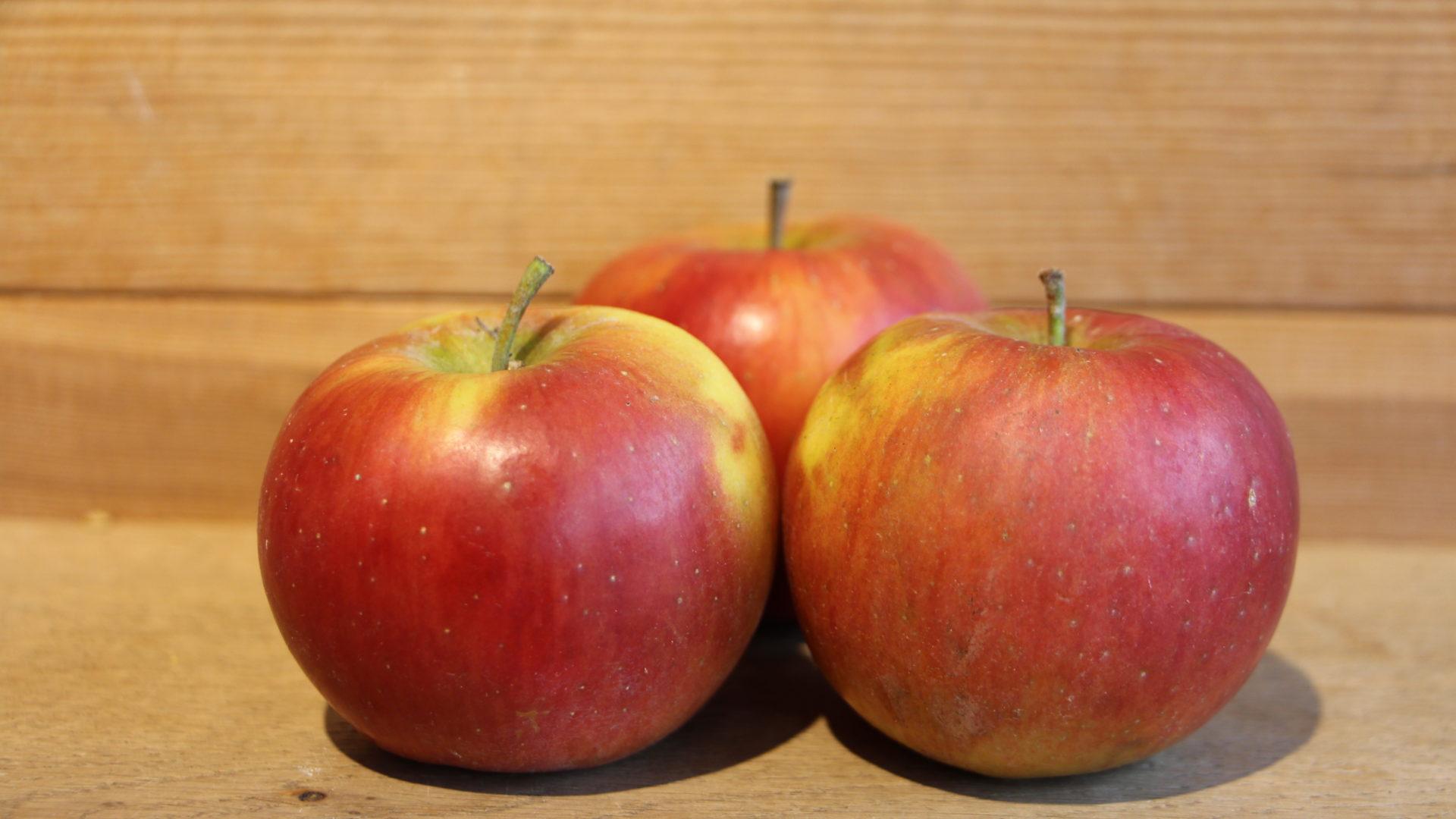 Ladina Apfel
