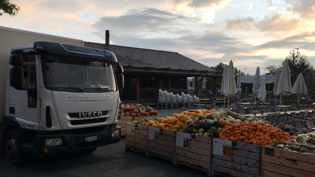 Lastwagen Jona