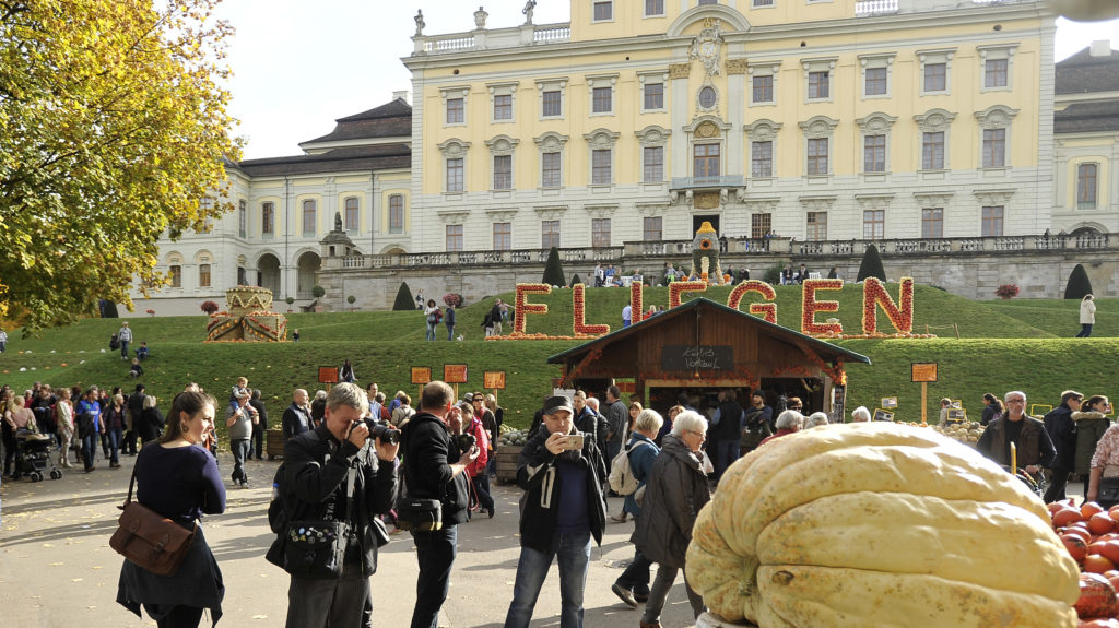 Kürbisausstellung Blüba Ludwigsburg 24.10.2015 Halloween Kürbis Schnitzen