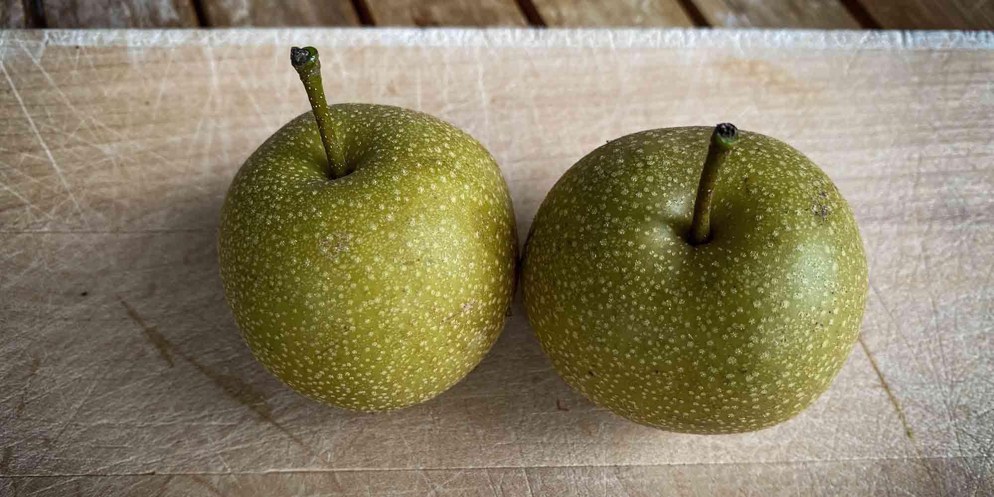 """Nashi wird auch als """"Apfel-Birne"""" bezeichnet. Kein Wunder..."""