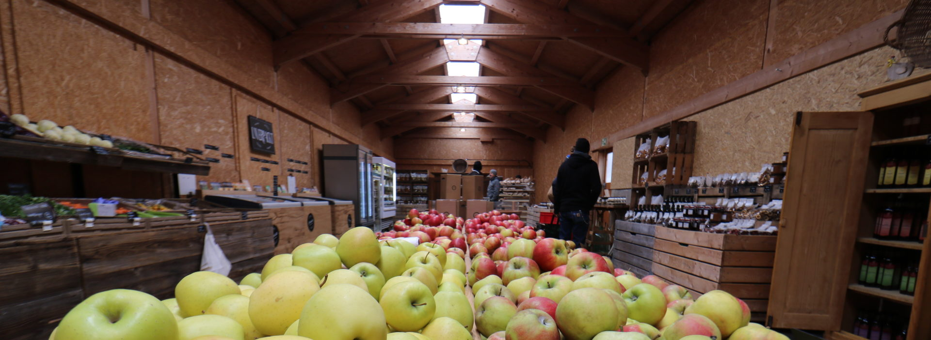 PopUp Römerhof Äpfel