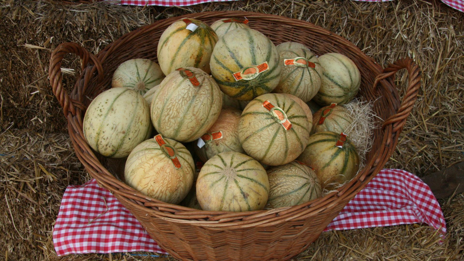 Rafzerfelder Melonen