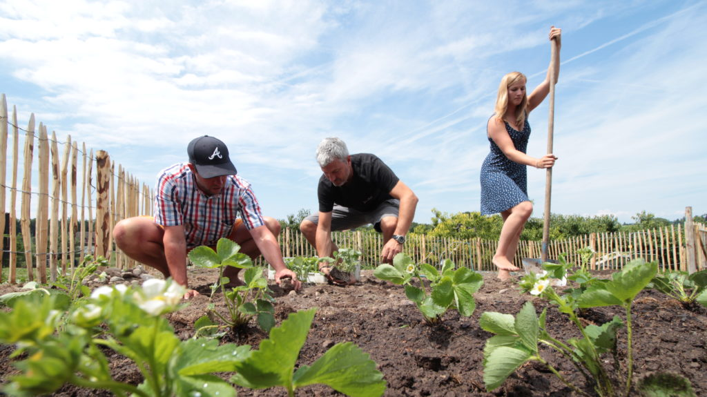 SeminarGarten Teamarbeit Garten