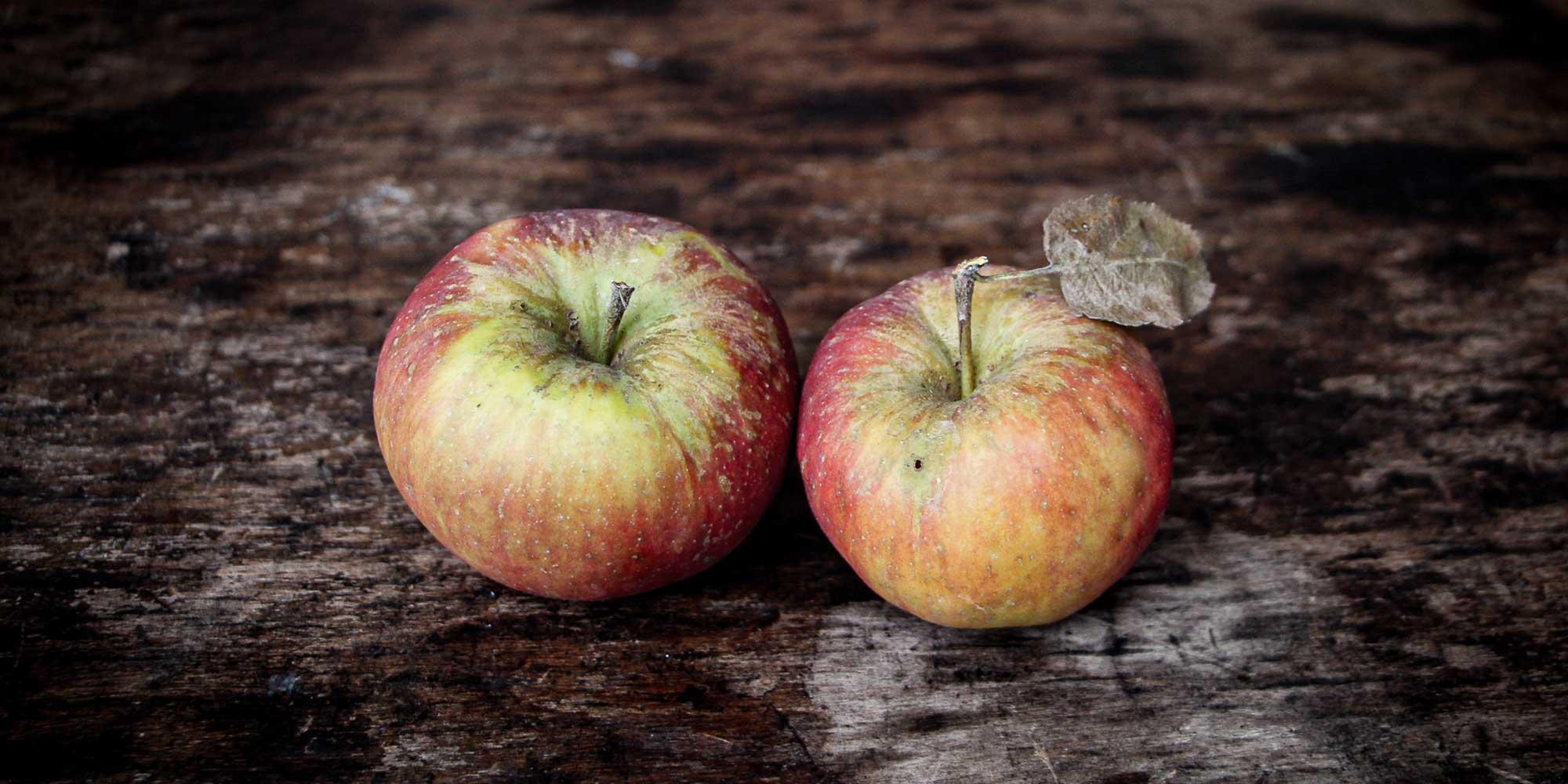 Topaz Apfelsorte