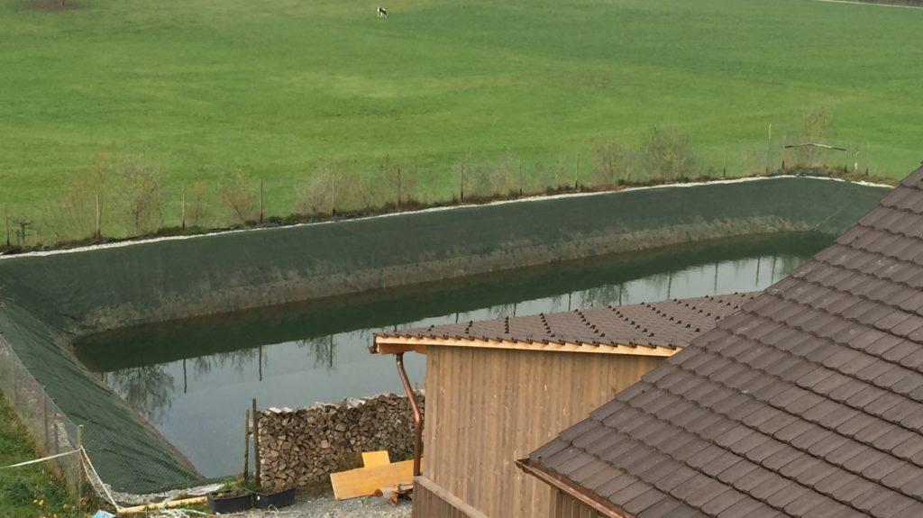 Trockener Teich