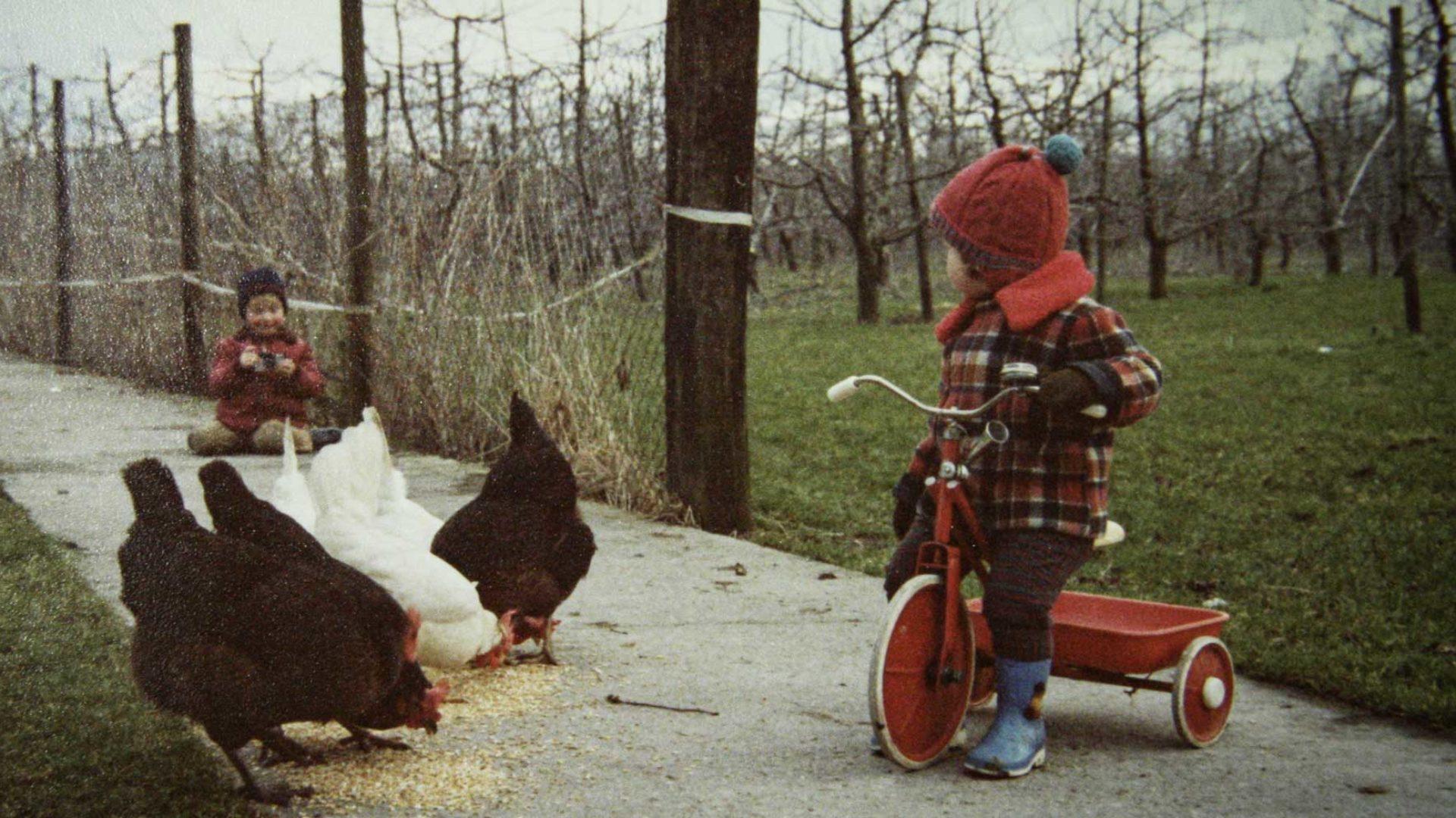 Kinder und Hühner