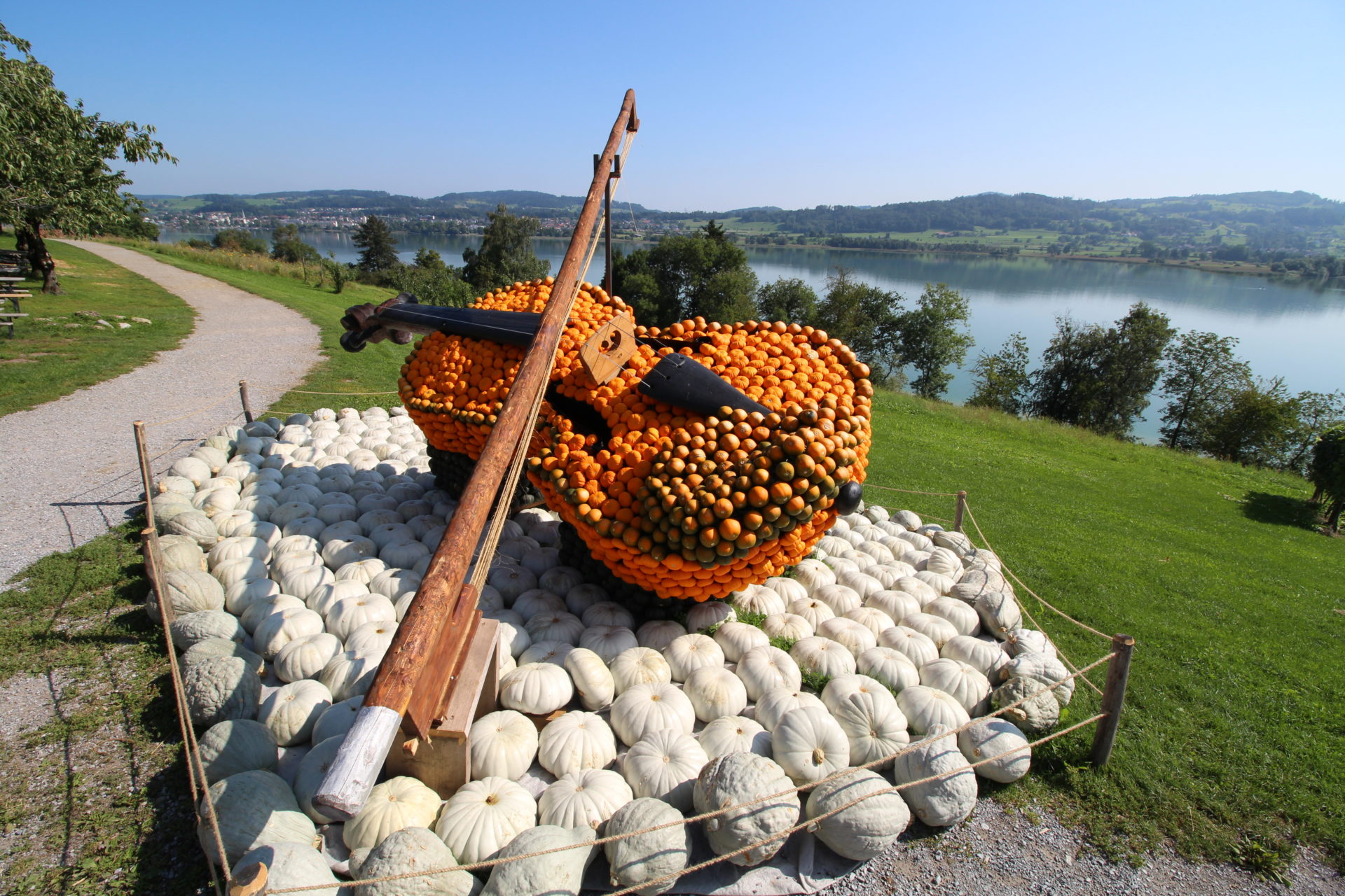 Violine Kürbisfigur
