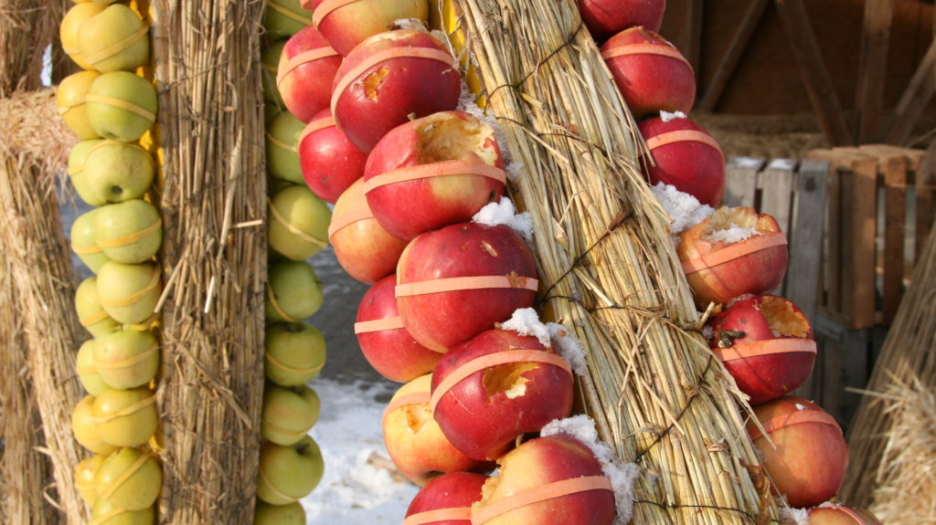 Vogelschaeden An Apfelfigur